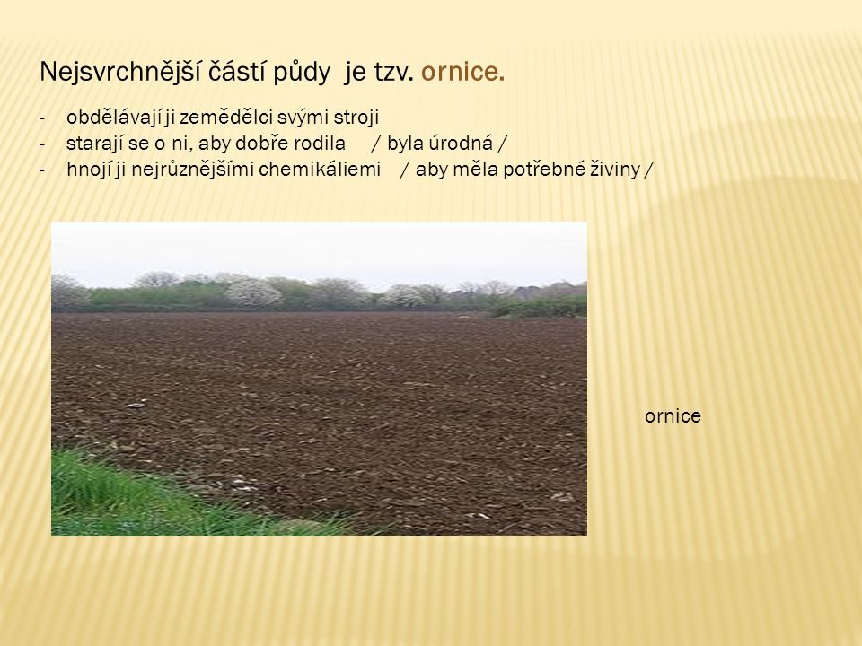Nejsvrchnější částí půdy je tzv. ornice. -obdělávají ji zemědělci svými stroji -starají se o ni, aby dobře rodila / byla úrodná / -hnojí ji nejrůznějš