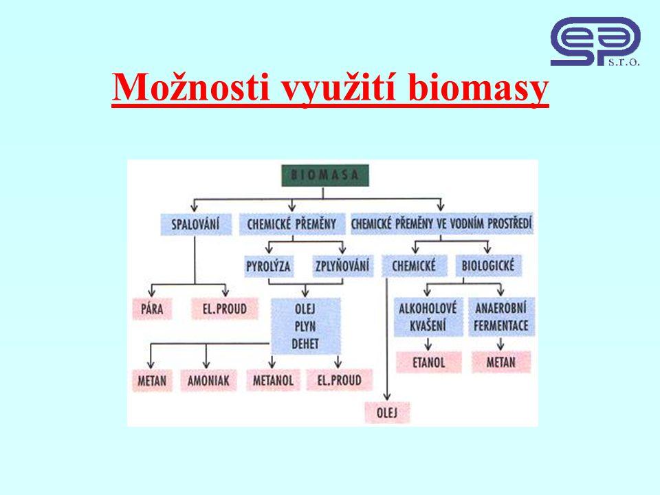Možnosti využití biomasy