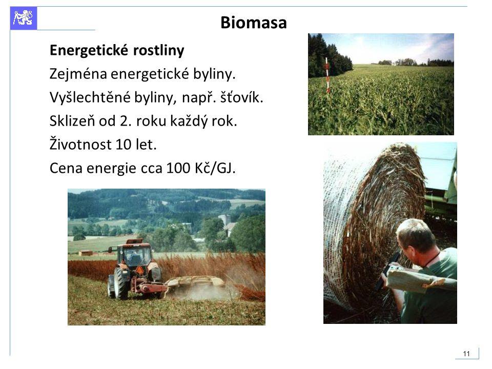11 Biomasa Energetické rostliny Zejména energetické byliny. Vyšlechtěné byliny, např. šťovík. Sklizeň od 2. roku každý rok. Životnost 10 let. Cena ene