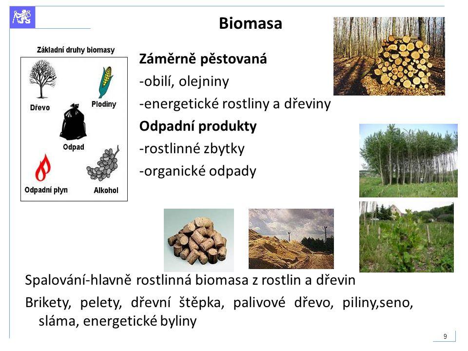 9 Biomasa Záměrně pěstovaná -obilí, olejniny -energetické rostliny a dřeviny Odpadní produkty -rostlinné zbytky -organické odpady Spalování-hlavně ros
