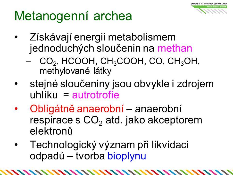 Metanogenní archea Získávají energii metabolismem jednoduchých sloučenin na methan –CO 2, HCOOH, CH 3 COOH, CO, CH 3 OH, methylované látky stejné slou