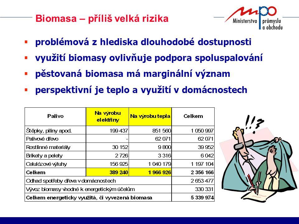 Biomasa – příliš velká rizika  problémová z hlediska dlouhodobé dostupnosti  využití biomasy ovlivňuje podpora spoluspalování  pěstovaná biomasa má