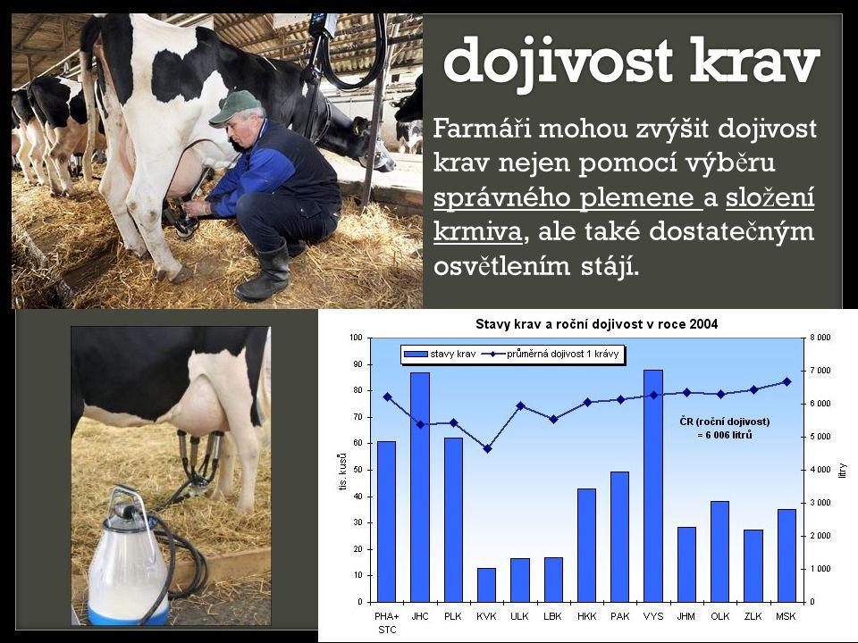 Farmá ř i mohou zvýšit dojivost krav nejen pomocí výb ě ru správného plemene a slo ž ení krmiva, ale také dostate č ným osv ě tlením stájí.