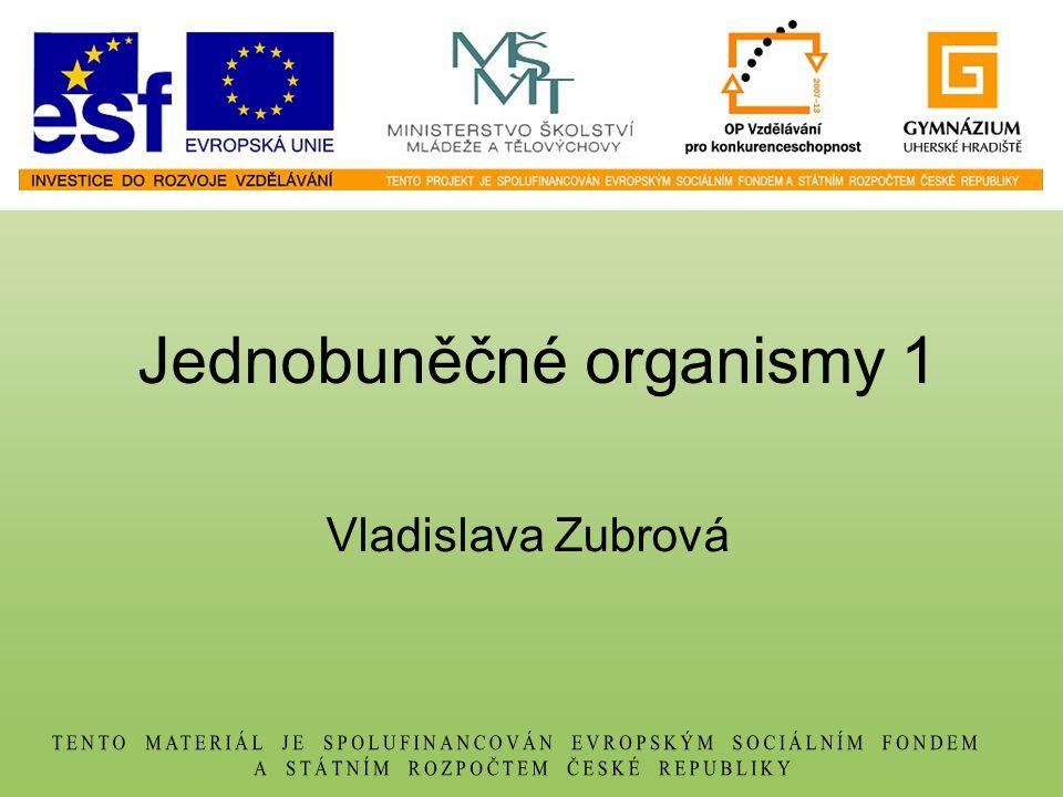 Jednobuněčné organismy 1 Vladislava Zubrová