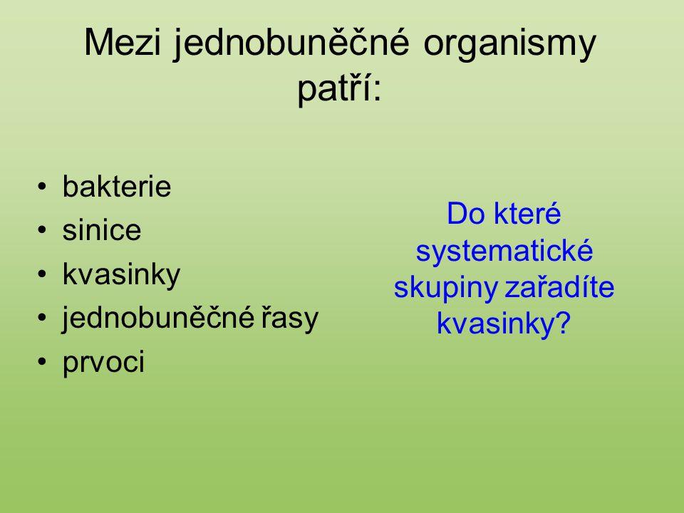 Mezi jednobuněčné organismy patří: bakterie sinice kvasinky jednobuněčné řasy prvoci Do které systematické skupiny zařadíte kvasinky?