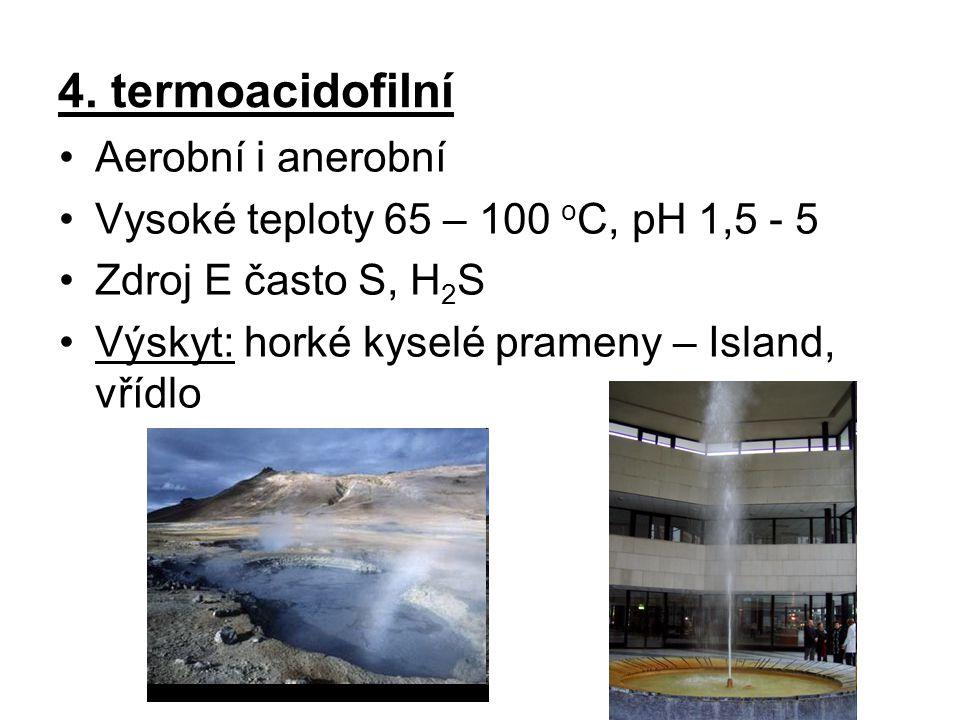 4. termoacidofilní Aerobní i anerobní Vysoké teploty 65 – 100 o C, pH 1,5 - 5 Zdroj E často S, H 2 S Výskyt: horké kyselé prameny – Island, vřídlo