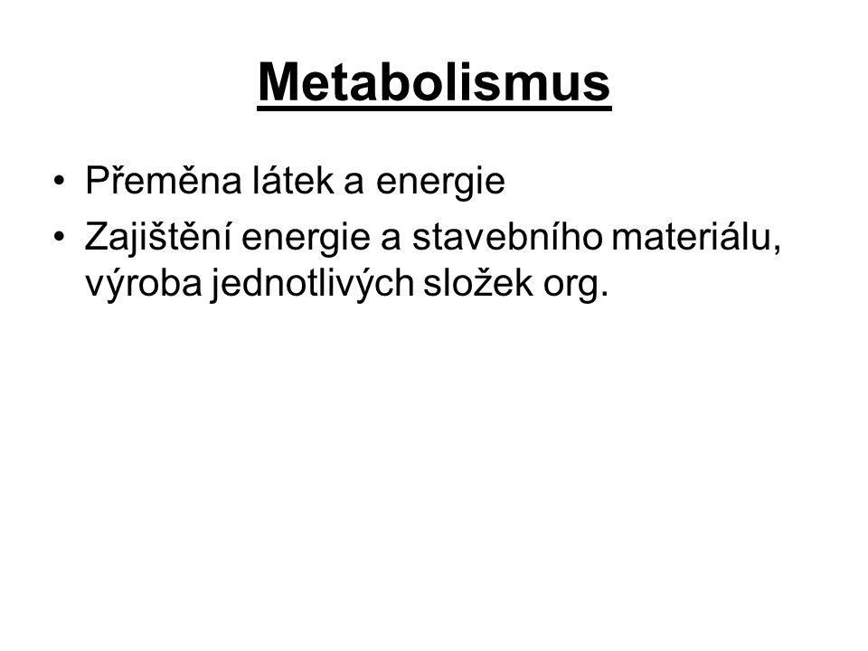 Metabolismus Přeměna látek a energie Zajištění energie a stavebního materiálu, výroba jednotlivých složek org.