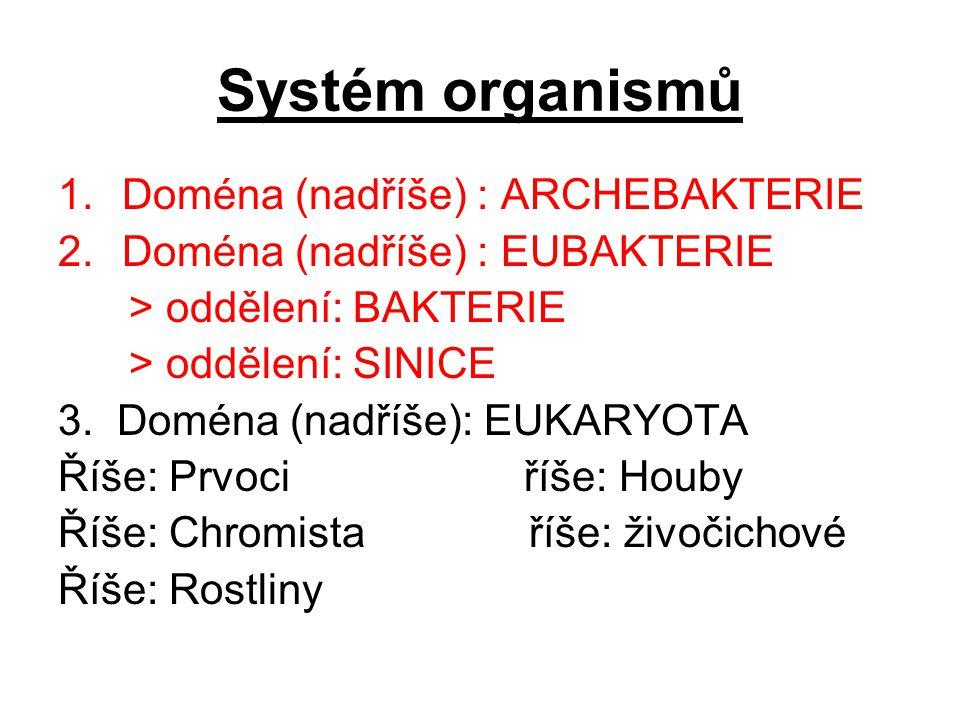 Systém organismů 1.Doména (nadříše) : ARCHEBAKTERIE 2.Doména (nadříše) : EUBAKTERIE > oddělení: BAKTERIE > oddělení: SINICE 3. Doména (nadříše): EUKAR