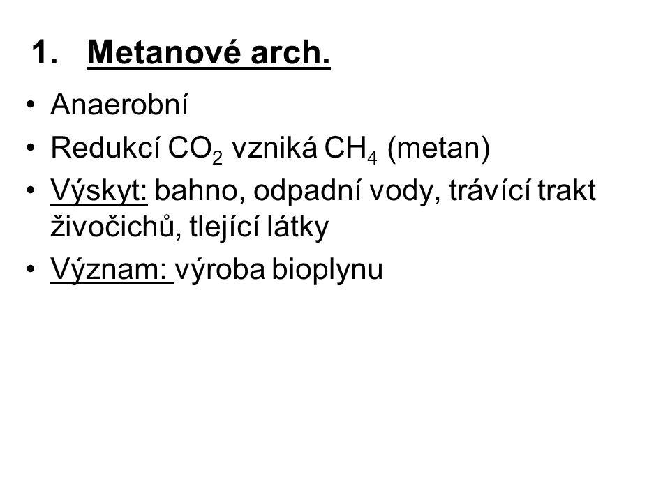 1.Metanové arch. Anaerobní Redukcí CO 2 vzniká CH 4 (metan) Výskyt: bahno, odpadní vody, trávící trakt živočichů, tlející látky Význam: výroba bioplyn