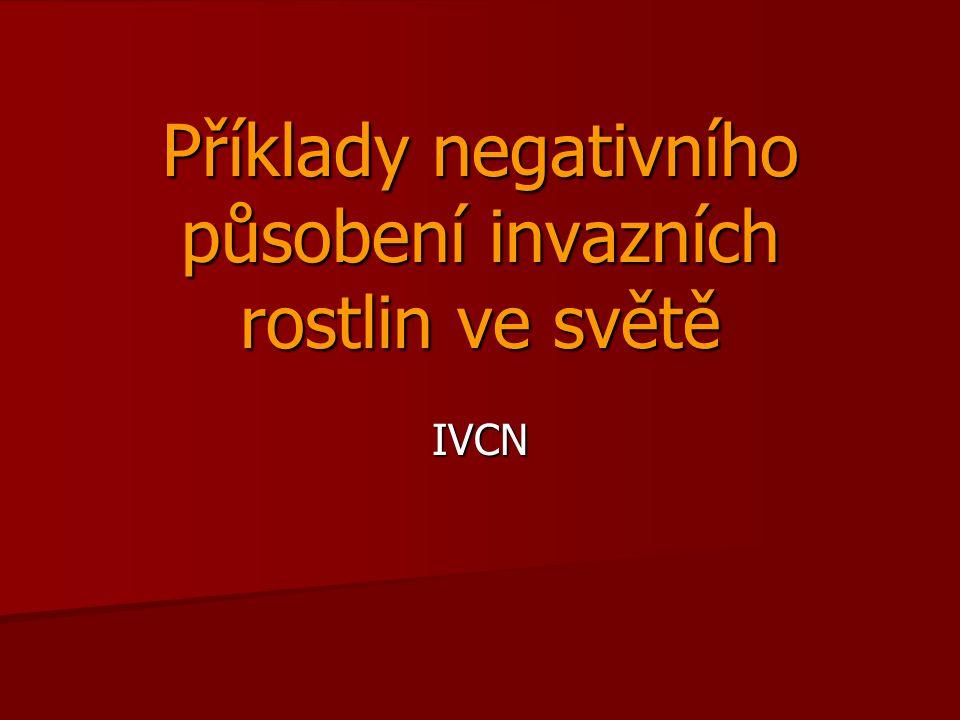 Příklady negativního působení invazních rostlin ve světě IVCN