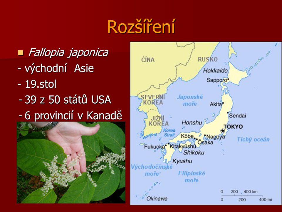 Rozšíření Fallopia japonica Fallopia japonica - východní Asie - 19.stol - 39 z 50 států USA - 6 provincií v Kanadě