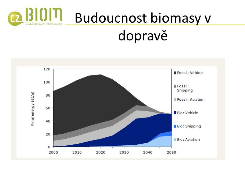 Budoucnost biomasy v dopravě