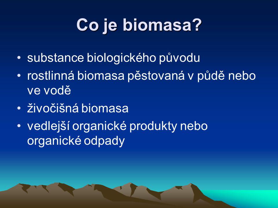 Co je biomasa.
