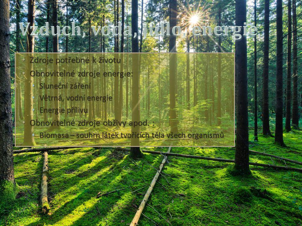 Zdroje potřebné k životu Zdroje potřebné k životu Obnovitelné zdroje energie: Obnovitelné zdroje energie: Sluneční záření Sluneční záření Větrná, vodní energie Větrná, vodní energie Energie přílivu Energie přílivu Obnovitelné zdroje obživy apod.