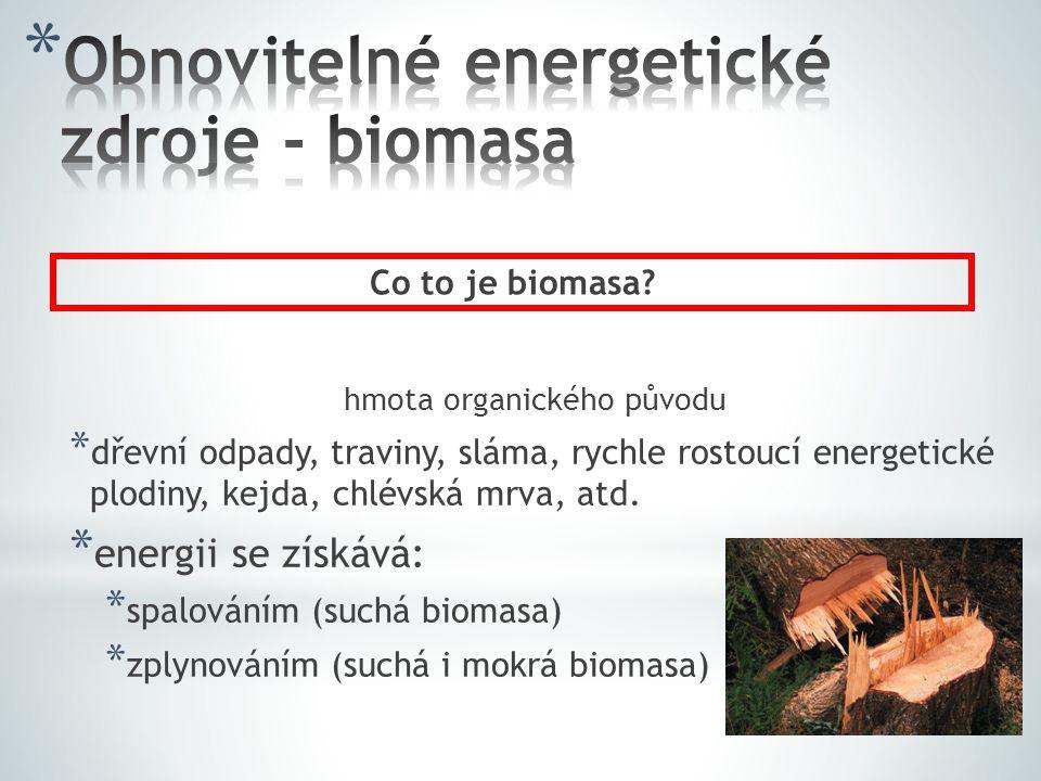 hmota organického původu * dřevní odpady, traviny, sláma, rychle rostoucí energetické plodiny, kejda, chlévská mrva, atd.