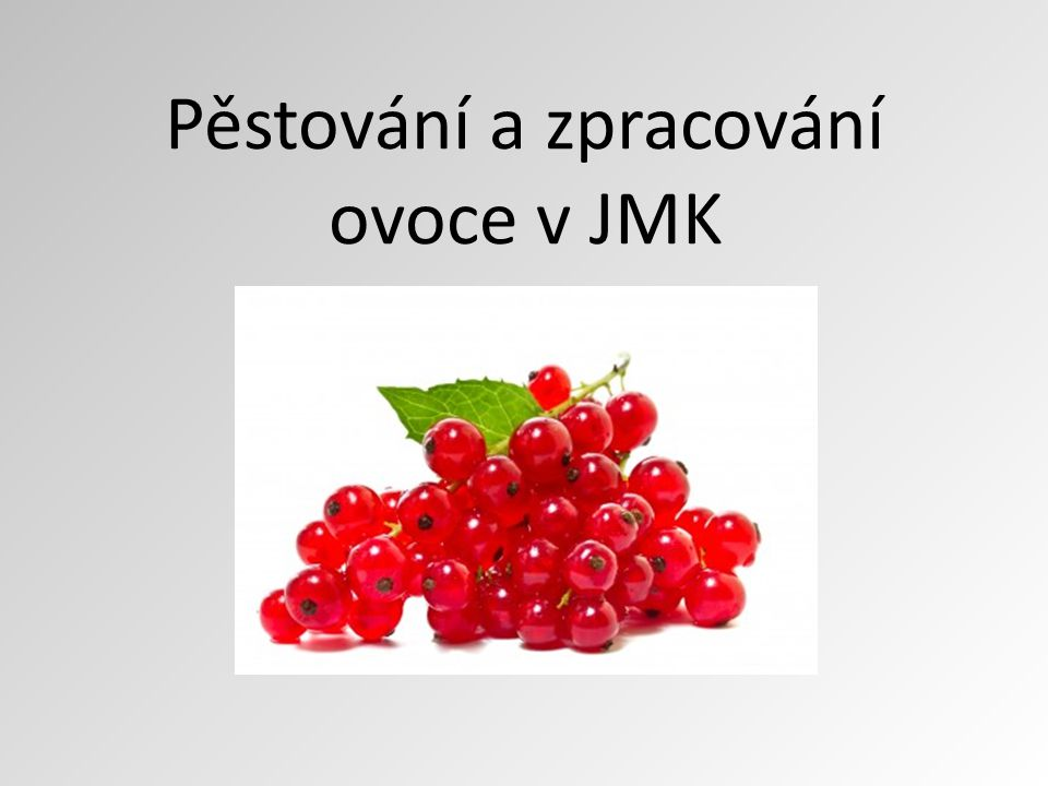 Pěstování a zpracování ovoce v JMK