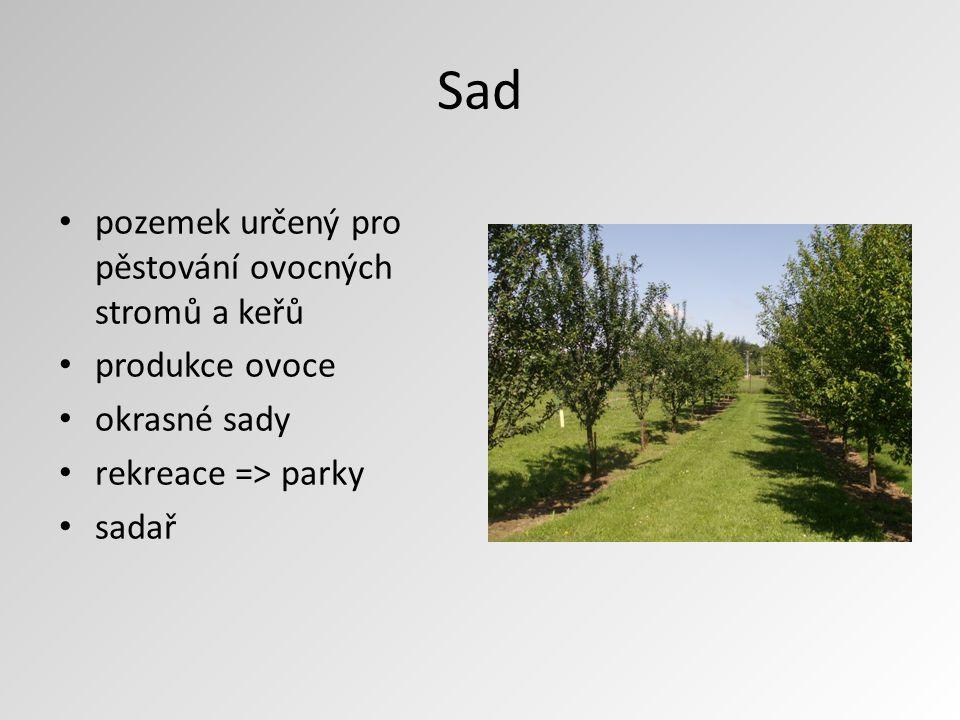 Sad pozemek určený pro pěstování ovocných stromů a keřů produkce ovoce okrasné sady rekreace => parky sadař