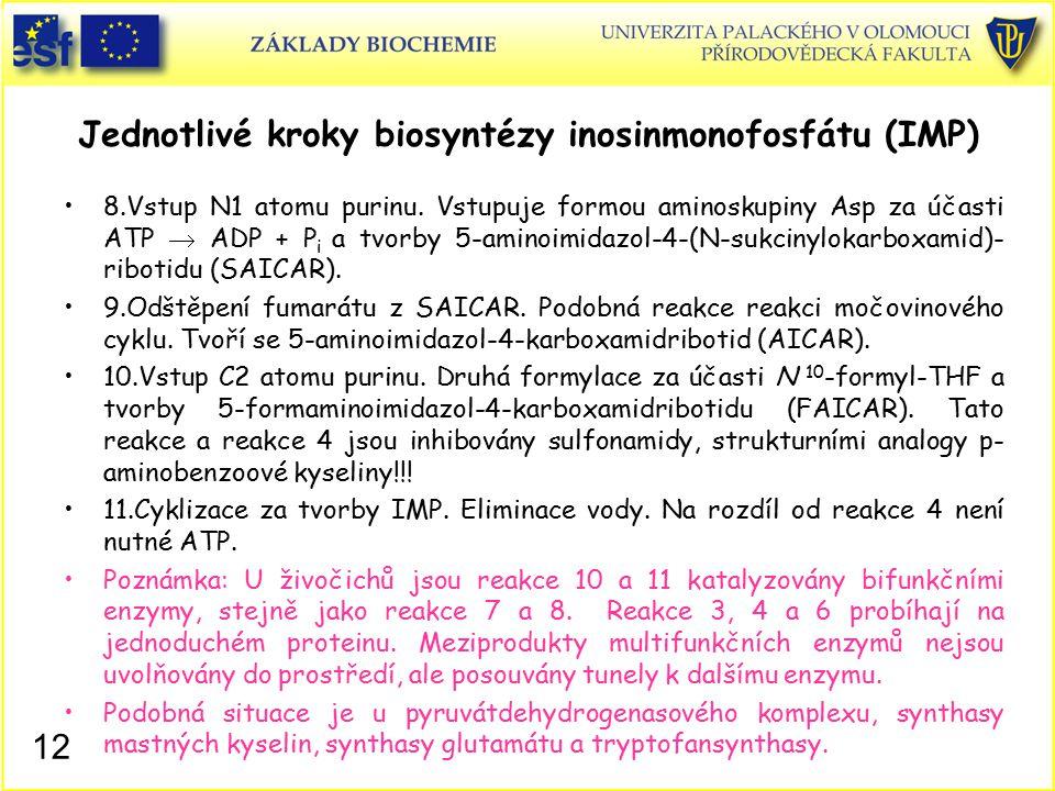 Jednotlivé kroky biosyntézy inosinmonofosfátu (IMP) 8.Vstup N1 atomu purinu. Vstupuje formou aminoskupiny Asp za účasti ATP  ADP + P i a tvorby 5-ami