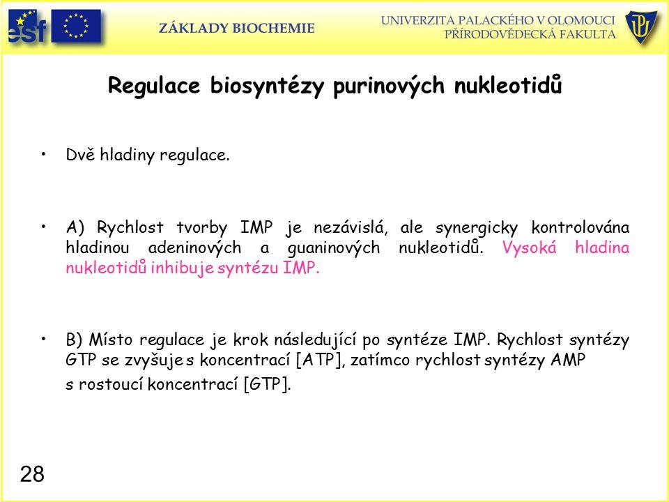 Regulace biosyntézy purinových nukleotidů Dvě hladiny regulace. A) Rychlost tvorby IMP je nezávislá, ale synergicky kontrolována hladinou adeninových