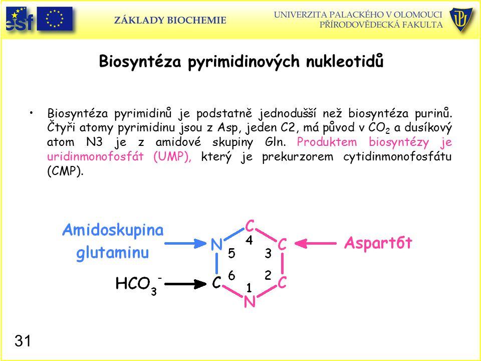 Biosyntéza pyrimidinových nukleotidů Biosyntéza pyrimidinů je podstatně jednodušší než biosyntéza purinů. Čtyři atomy pyrimidinu jsou z Asp, jeden C2,