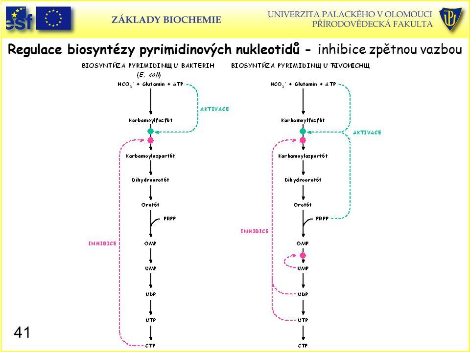 Regulace biosyntézy pyrimidinových nukleotidů - inhibice zpětnou vazbou 41