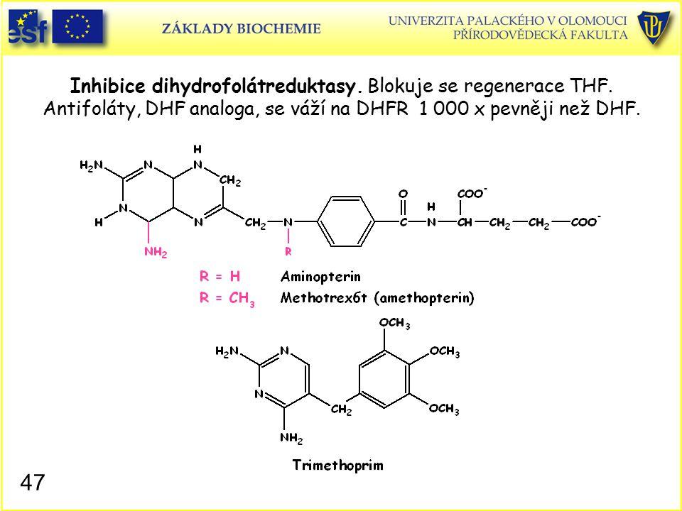 Inhibice dihydrofolátreduktasy. Blokuje se regenerace THF. Antifoláty, DHF analoga, se váží na DHFR 1 000 x pevněji než DHF. 47