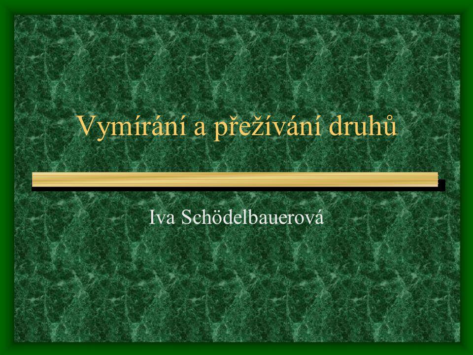 Vymírání a přežívání druhů Iva Schödelbauerová