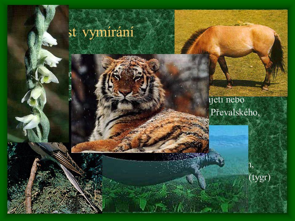Příčiny vymírání Větší vymírání druhů na ostrovech – téměř polovina živočišných a rostlinných druhů za posledních 400 let  1) endemismus – vyskytují se pouze na 1 nebo několika ost.
