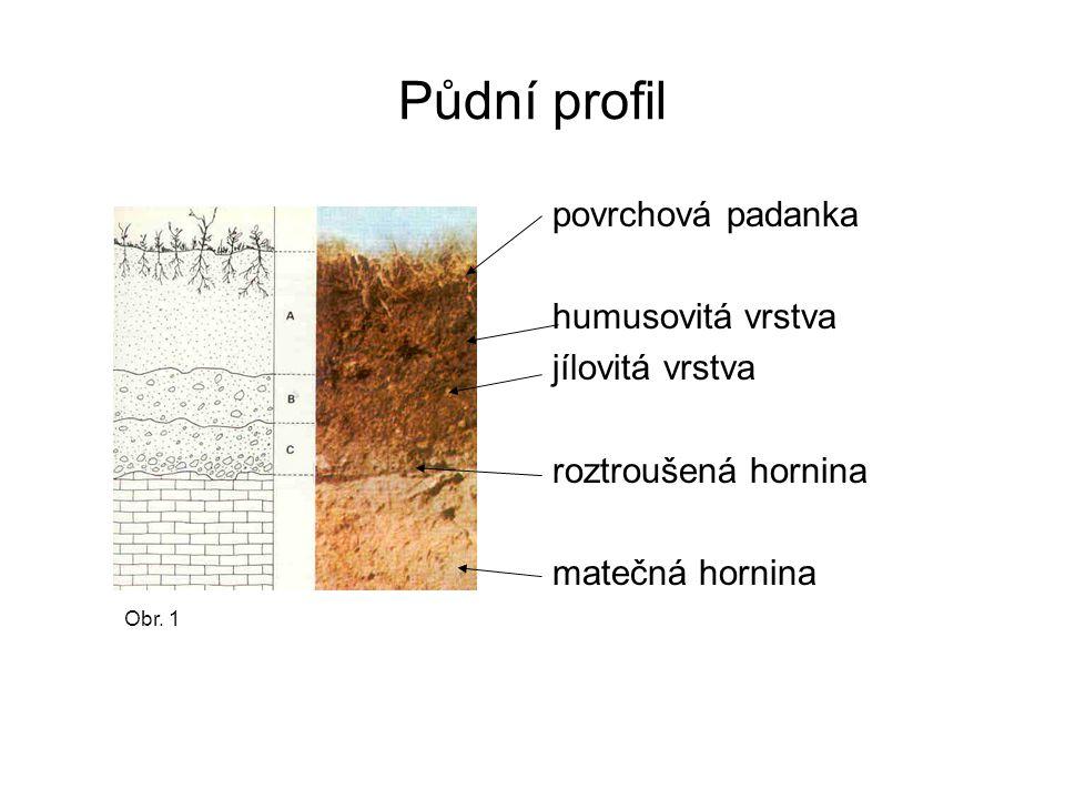 Půdní profil povrchová padanka humusovitá vrstva jílovitá vrstva roztroušená hornina matečná hornina Obr. 1