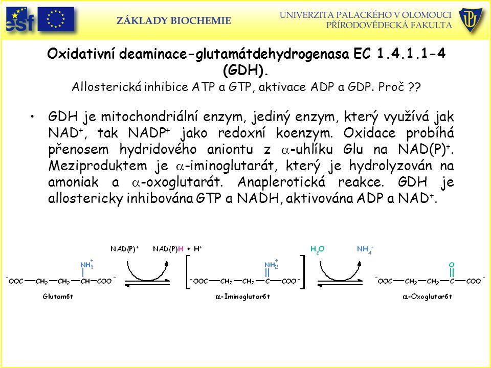 Oxidativní deaminace-glutamátdehydrogenasa EC 1.4.1.1-4 (GDH). Allosterická inhibice ATP a GTP, aktivace ADP a GDP. Proč ?? GDH je mitochondriální enz