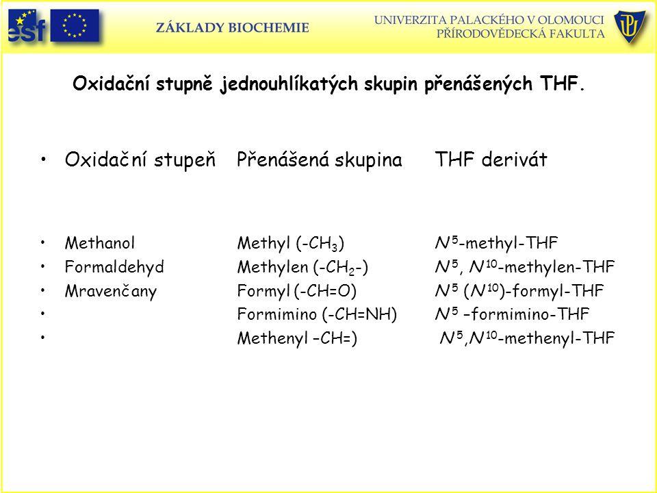 Oxidační stupně jednouhlíkatých skupin přenášených THF. Oxidační stupeňPřenášená skupinaTHF derivát MethanolMethyl (-CH 3 )N 5 -methyl-THF Formaldehyd
