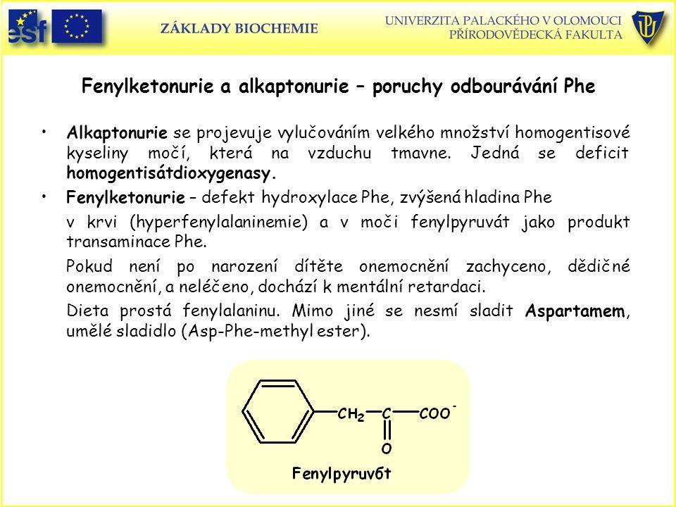 Fenylketonurie a alkaptonurie – poruchy odbourávání Phe Alkaptonurie se projevuje vylučováním velkého množství homogentisové kyseliny močí, která na v