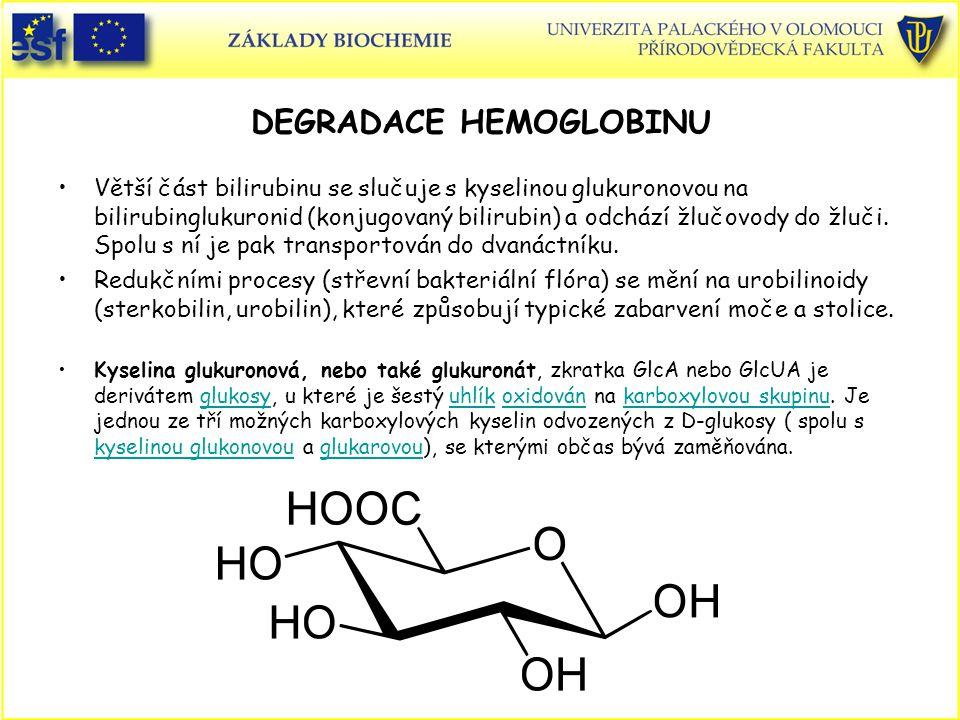 DEGRADACE HEMOGLOBINU Větší část bilirubinu se slučuje s kyselinou glukuronovou na bilirubinglukuronid (konjugovaný bilirubin) a odchází žlučovody do
