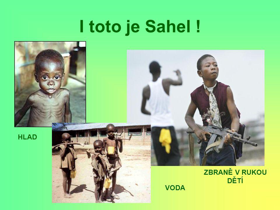 I toto je Sahel ! HLAD VODA ZBRANĚ V RUKOU DĚTÍ