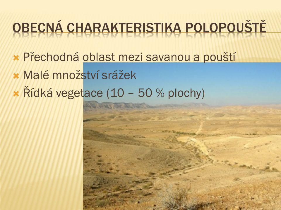  Přechodná oblast mezi savanou a pouští  Malé množství srážek  Řídká vegetace (10 – 50 % plochy)