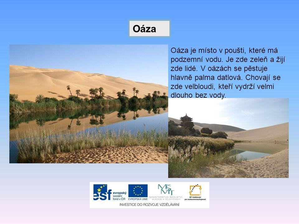 Oáza Oáza je místo v poušti, které má podzemní vodu.