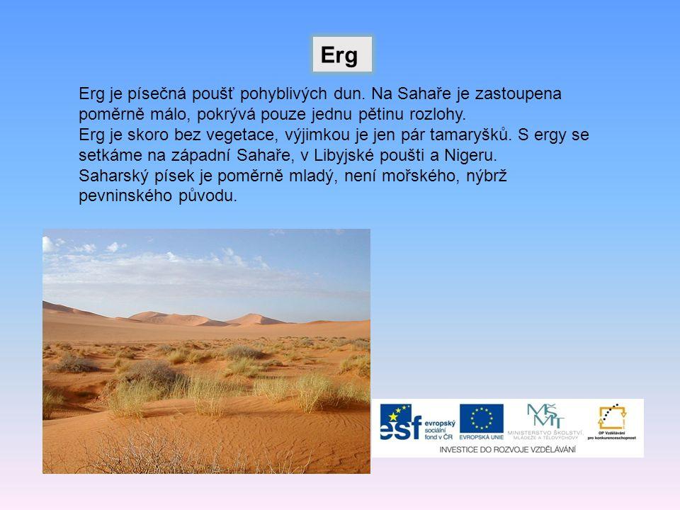 Erg je písečná poušť pohyblivých dun.