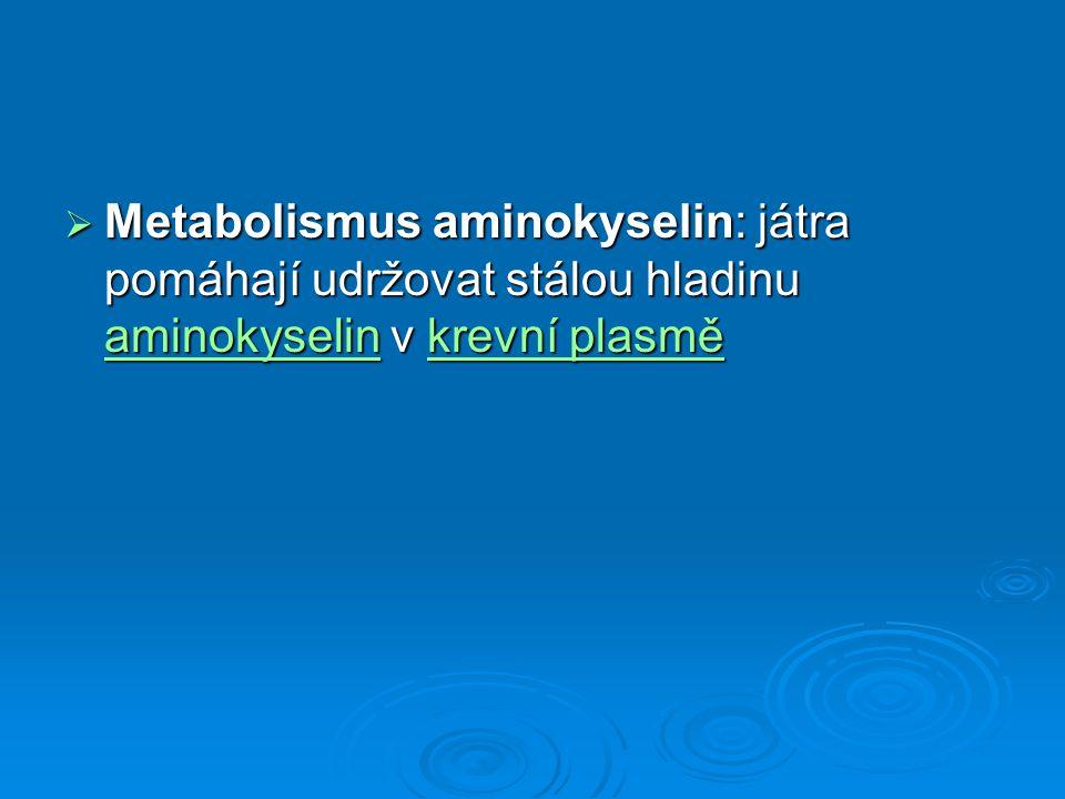  Metabolismus aminokyselin: játra pomáhají udržovat stálou hladinu aminokyselin v krevní plasmě aminokyselinkrevní plasmě aminokyselinkrevní plasmě