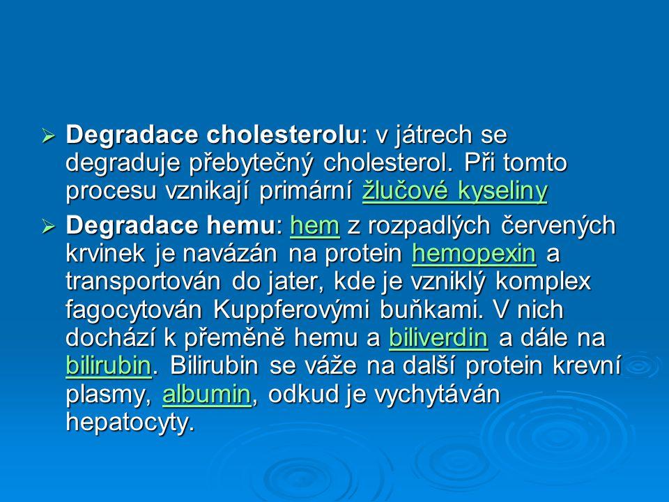  Degradace cholesterolu: v játrech se degraduje přebytečný cholesterol. Při tomto procesu vznikají primární žlučové kyseliny žlučové kyselinyžlučové
