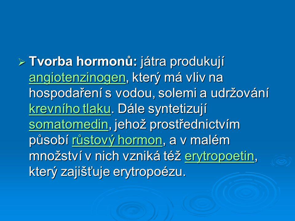  Tvorba hormonů: játra produkují angiotenzinogen, který má vliv na hospodaření s vodou, solemi a udržování krevního tlaku. Dále syntetizují somatomed