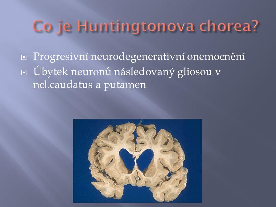  Progresivní neurodegenerativní onemocnění  Úbytek neuronů následovaný gliosou v ncl.caudatus a putamen