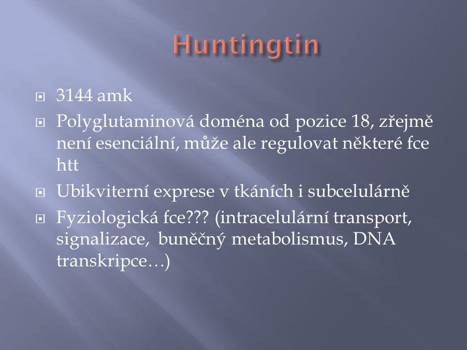  3144 amk  Polyglutaminová doména od pozice 18, zřejmě není esenciální, může ale regulovat některé fce htt  Ubikviterní exprese v tkáních i subcelulárně  Fyziologická fce??.