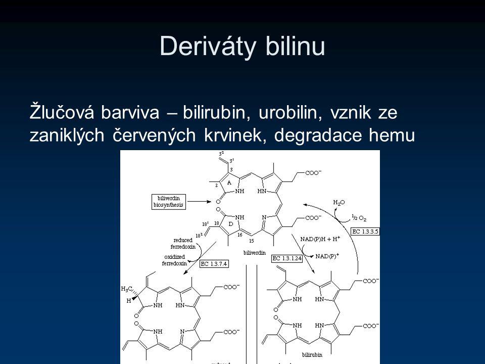 Deriváty bilinu Žlučová barviva – bilirubin, urobilin, vznik ze zaniklých červených krvinek, degradace hemu