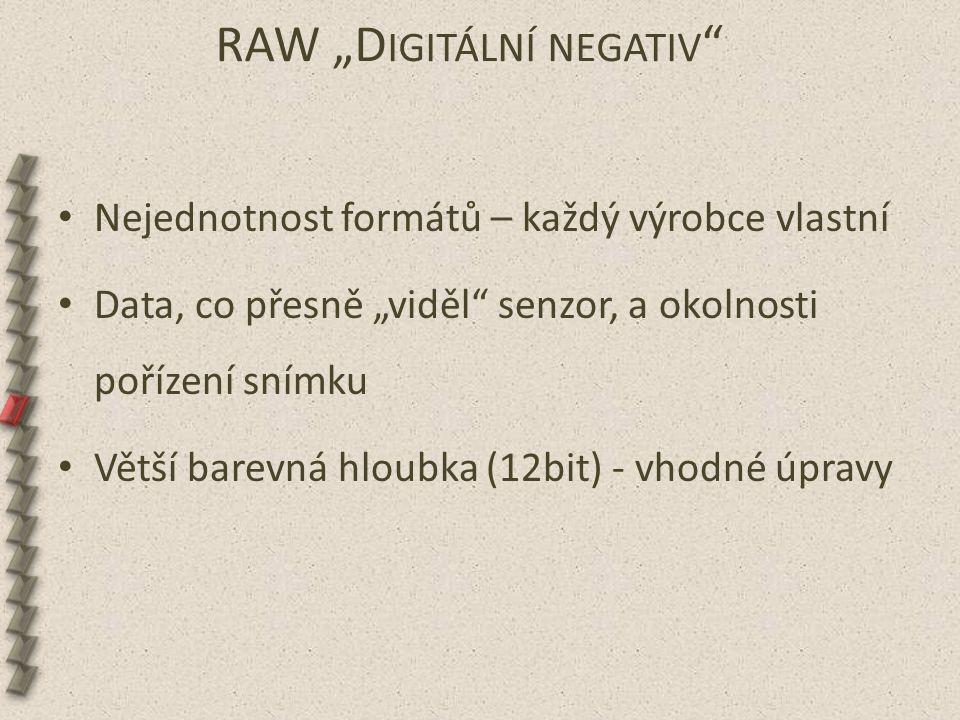 """RAW """"D IGITÁLNÍ NEGATIV """" Nejednotnost formátů – každý výrobce vlastní Data, co přesně """"viděl"""" senzor, a okolnosti pořízení snímku Větší barevná hloub"""