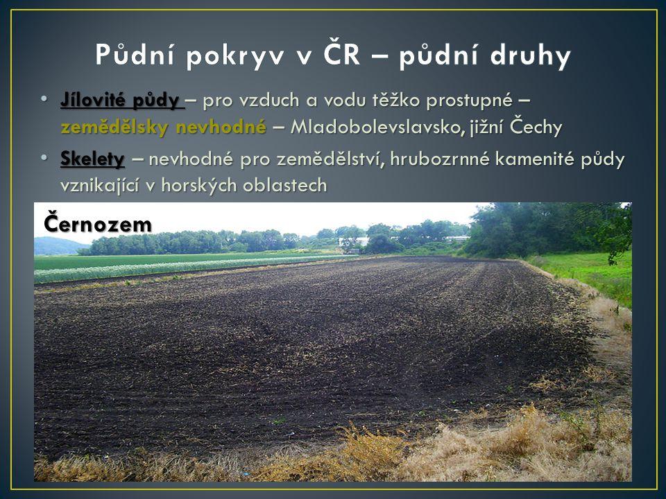 Jílovité půdy – pro vzduch a vodu těžko prostupné – zemědělsky nevhodné – Mladobolevslavsko, jižní Čechy Jílovité půdy – pro vzduch a vodu těžko prost