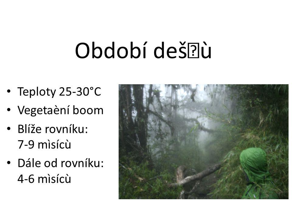Období dešù Teploty 25-30°C Vegetaèní boom Blíže rovníku: 7-9 mìsícù Dále od rovníku: 4-6 mìsícù