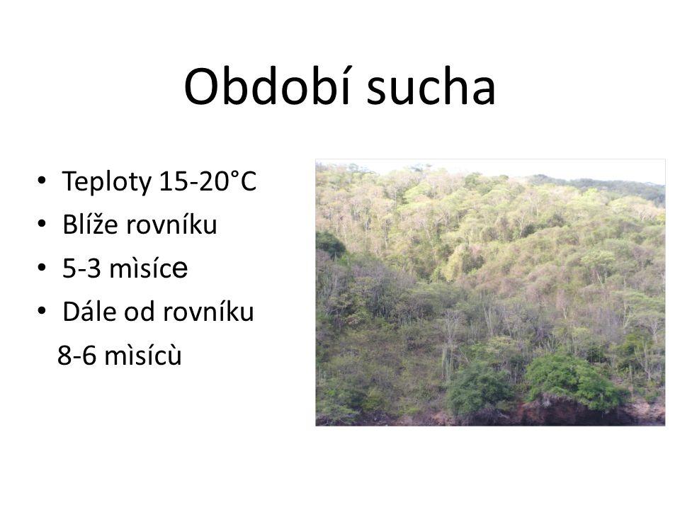 Období sucha Teploty 15-20°C Blíže rovníku 5-3 mìsíc e Dále od rovníku 8-6 mìsícù