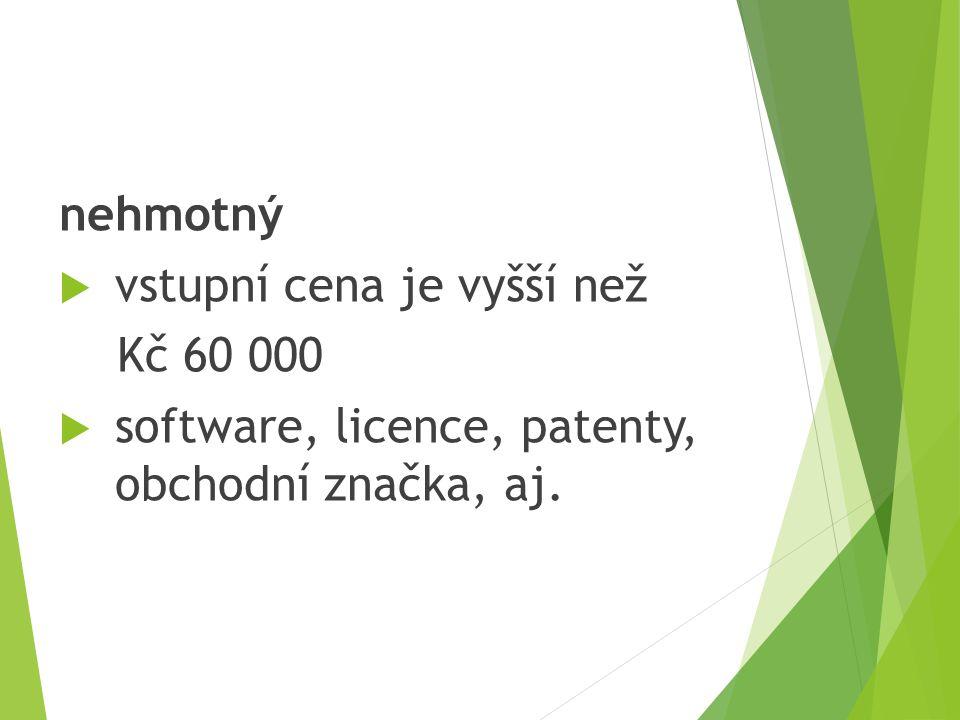 nehmotný  vstupní cena je vyšší než Kč 60 000  software, licence, patenty, obchodní značka, aj.