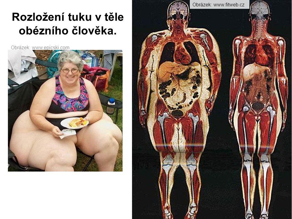 Obrázek: http://said-fartat.blogspot.com