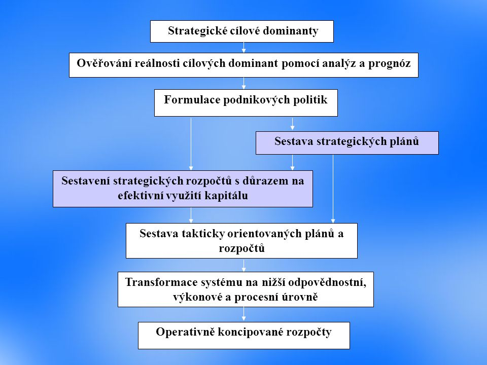 Strategické cílové dominanty Ověřování reálnosti cílových dominant pomocí analýz a prognóz Formulace podnikových politik Sestava strategických plánů S